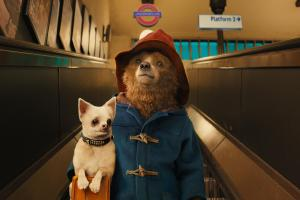 From Peru to the big screen, beloved bear Paddington in family adventure